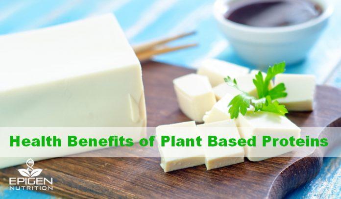 Lean plant protein