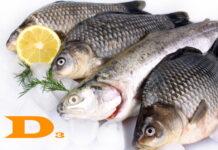 vitamin D foods list